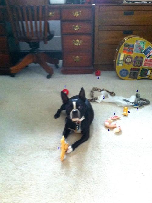 Murphy's Toys